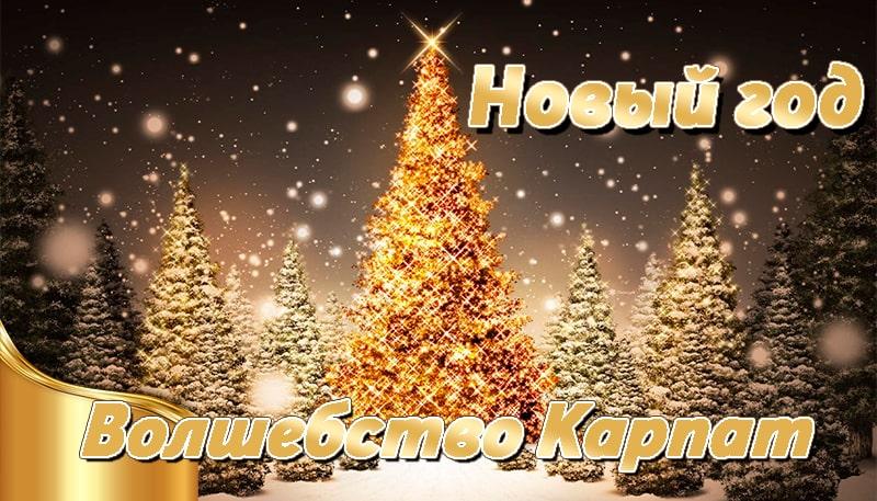 Новый год в Карпатах 2021 на 4 дня