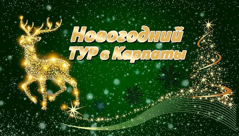 Новый год в Карпатах 2021 на 5 дней
