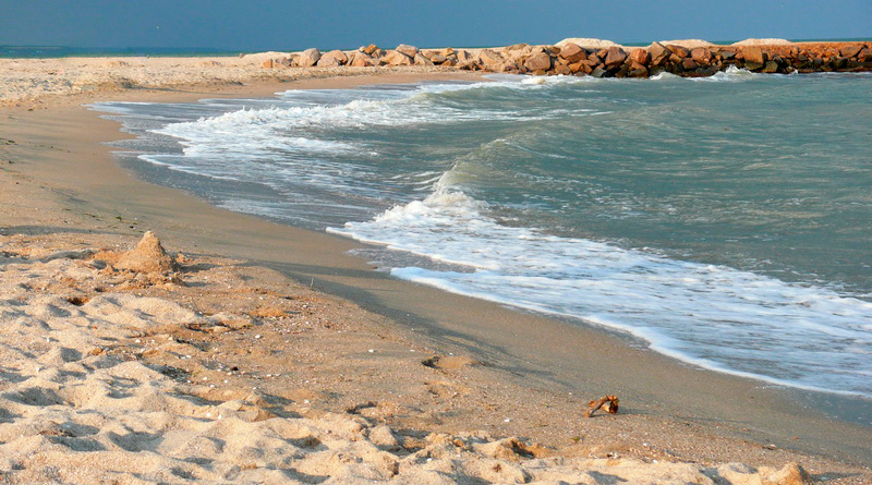 Пожелание море всего