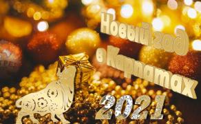 Запрошуємо на Новий рік 2021 для зустрічі Нового року, катання на лижах в Буковелі, цікаві екскурсії