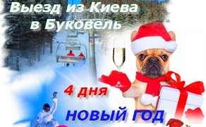 Туры в Карпаты на Новый год