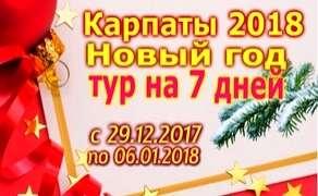 Новый год в Карпатах на 7 дней