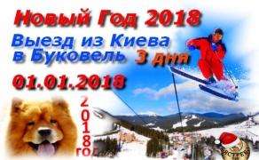 Новый год в Карпатах 2018