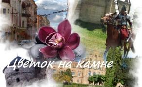 Тур в  Черновцы Каменец
